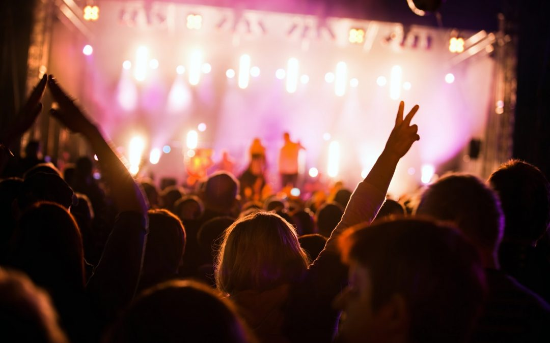 The Importance of Wearing Ear Plugs During Concerts – What to Know